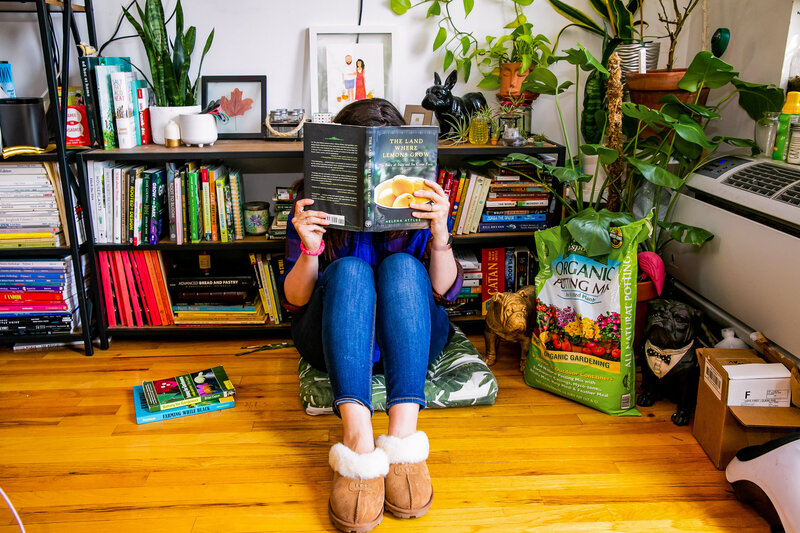Woman reading book, The Land Where Lemons Grow, in her apartment surrounded by house plants