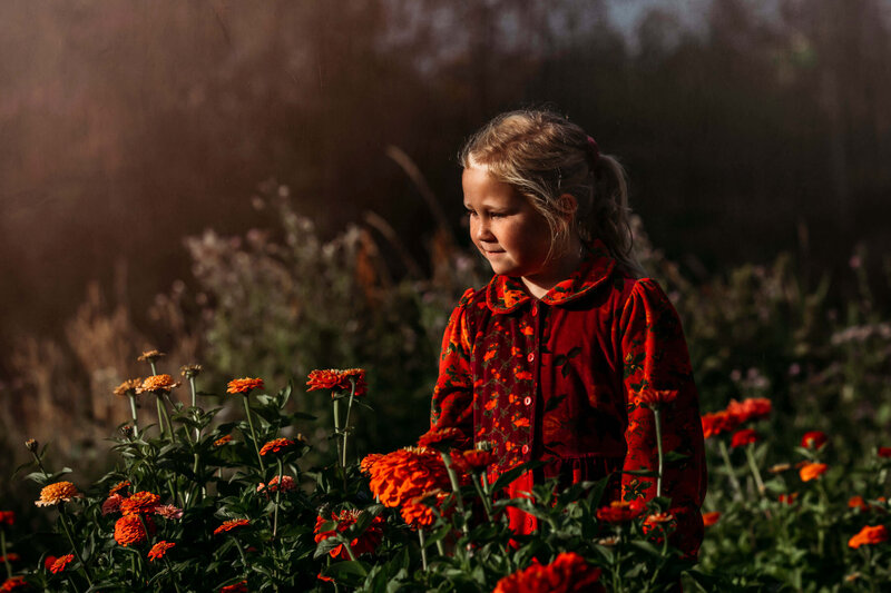 little girl with zinnia flowers