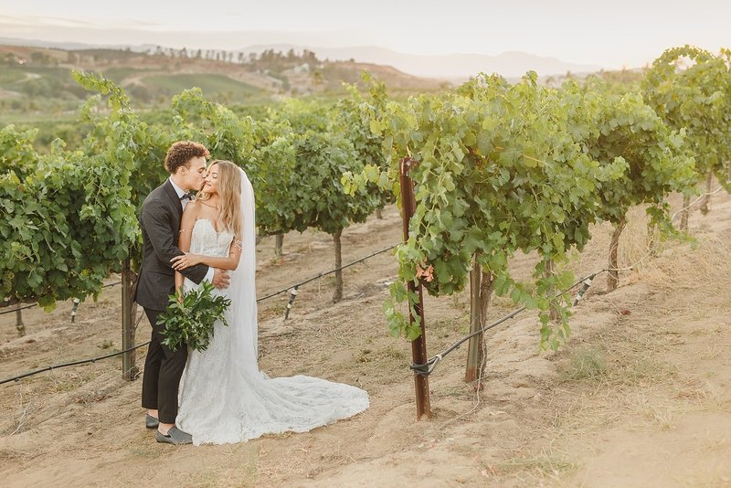 Falkner-Winery-Wedding-Photos-24
