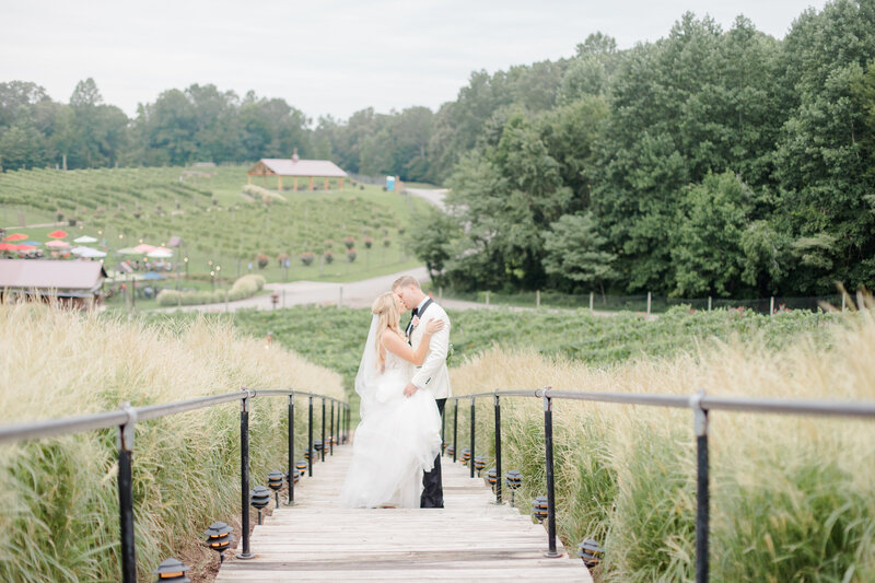 bride and groom kissing on steps at Running Hare Vineyard Wedding photographer costola photography