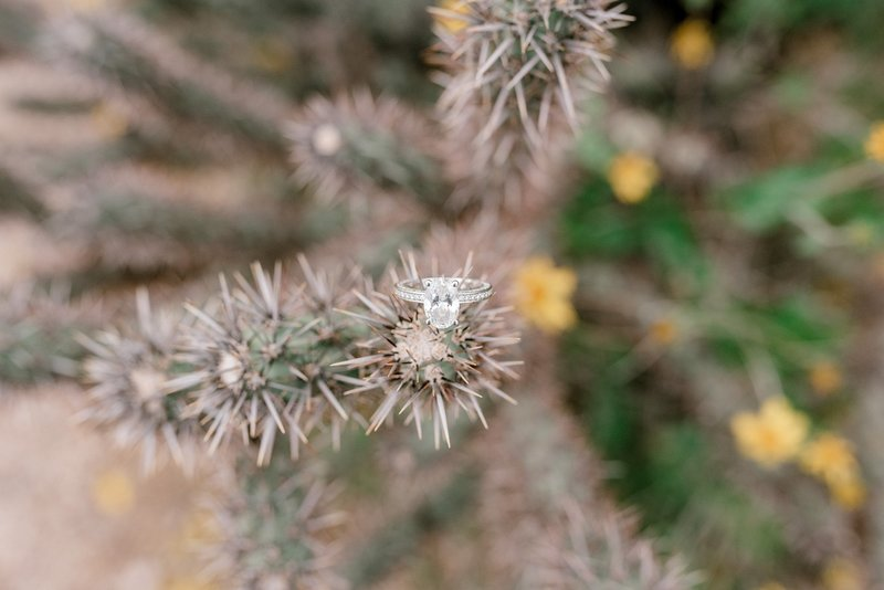 arizona-wedding-photographer-marisa-belle-photography-13