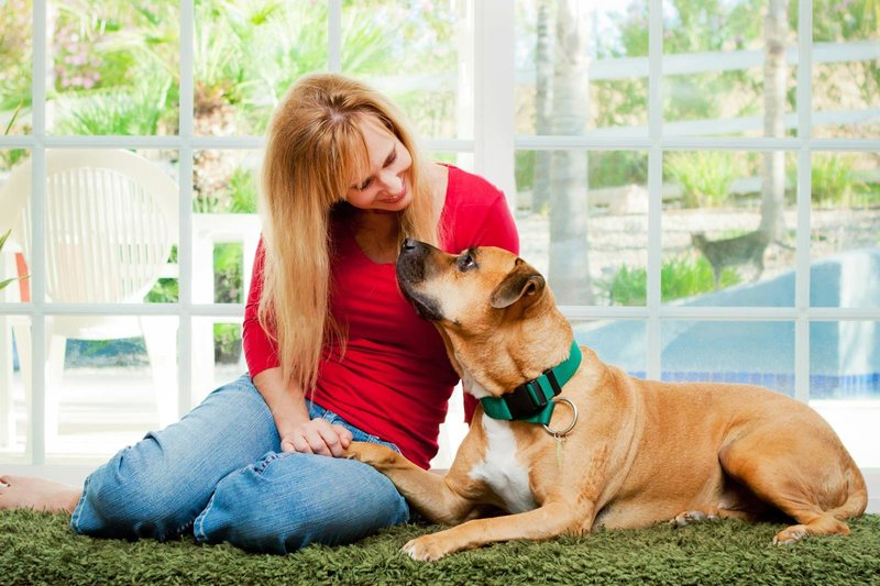 San-Diego-Pet-Family-Photographer-Ali-Peterson-Photography_0009