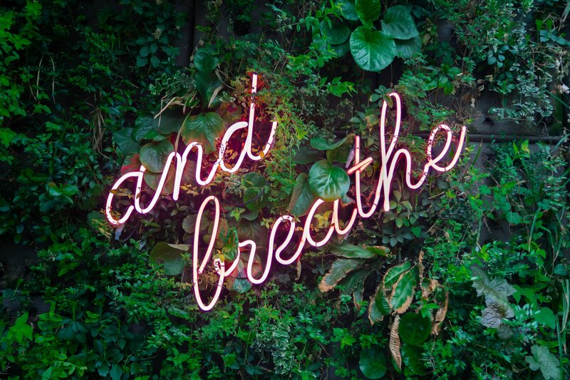 """and breathe"" in neon letters over a green leafy background"