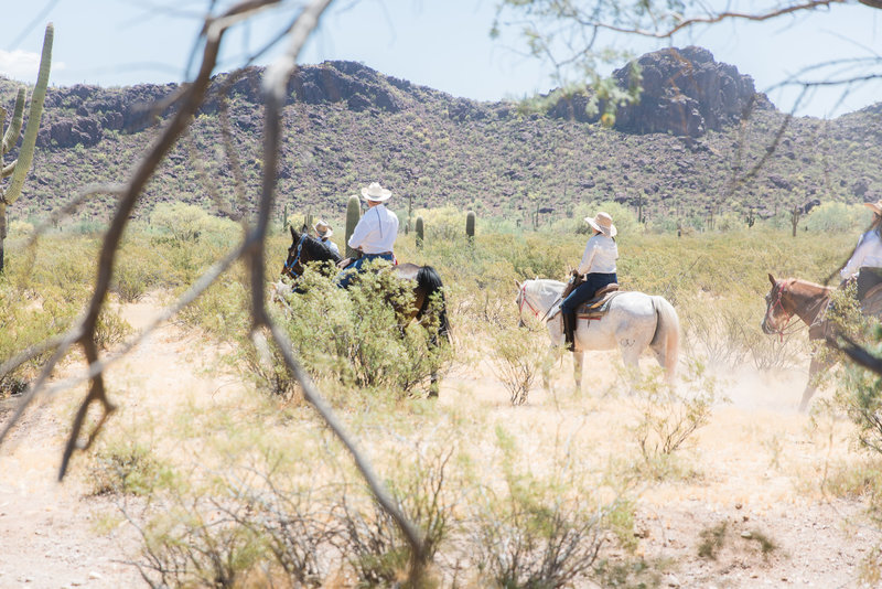 group of equestrians riding in the arizona desert