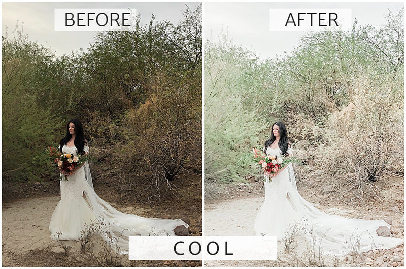 lightroom mobile presets how to edit photos for instagram_0025