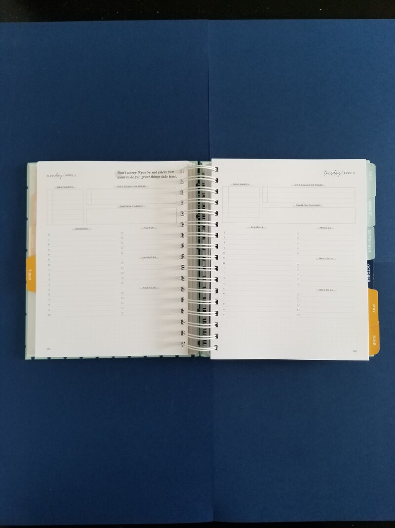 03 Daily Spread