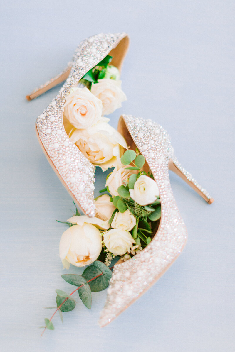 Badgley Mischka applique wedding shoes in blush colour