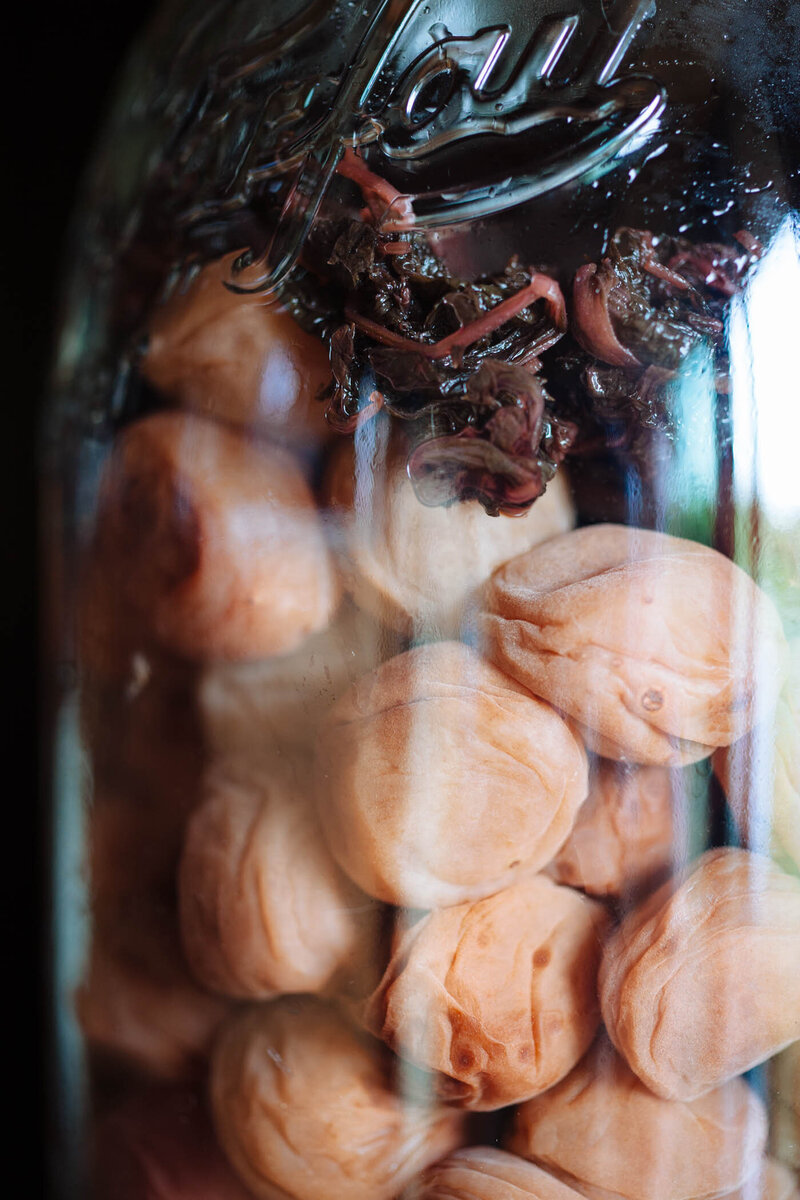 Umeboshi Drying-7