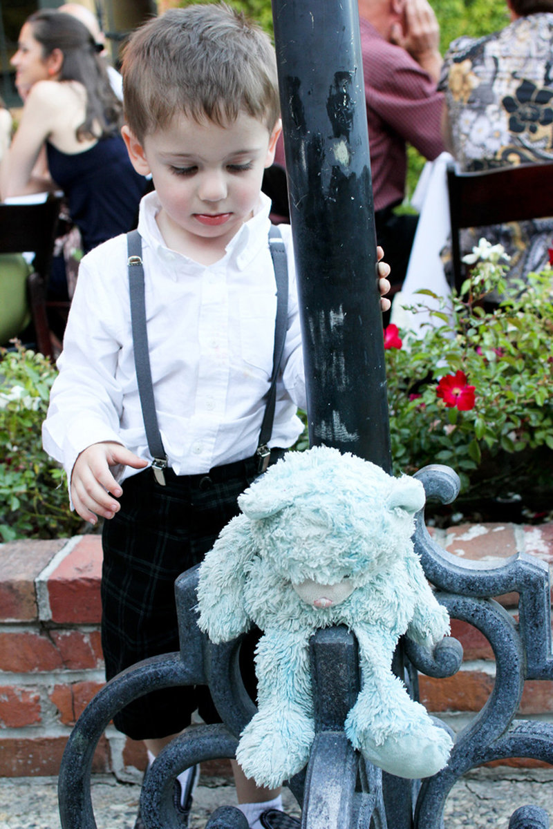 Ring bearer wedding, ring bearer