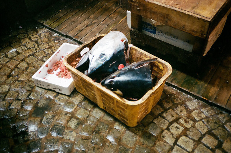 tsukiji-fish-market-japan007