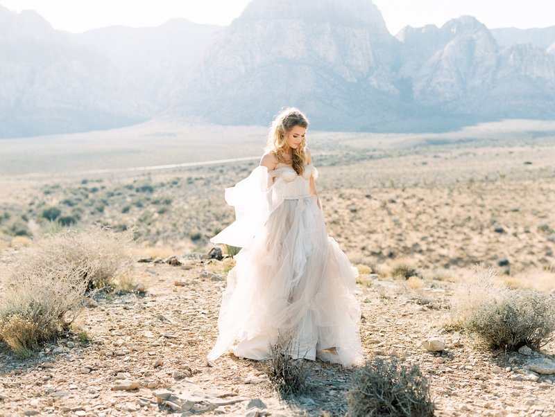 bride in the mountains desert