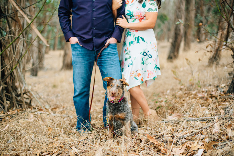wedding photographers and their puppy
