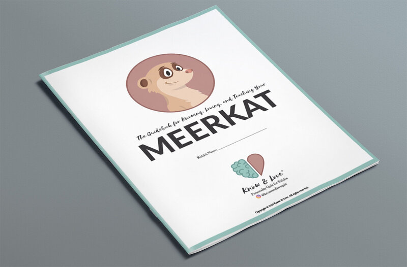 meerkatonbook copy