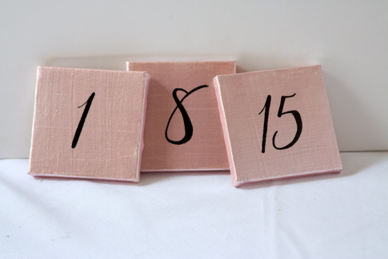 01019_Pink & Black Canvas Table Numbers