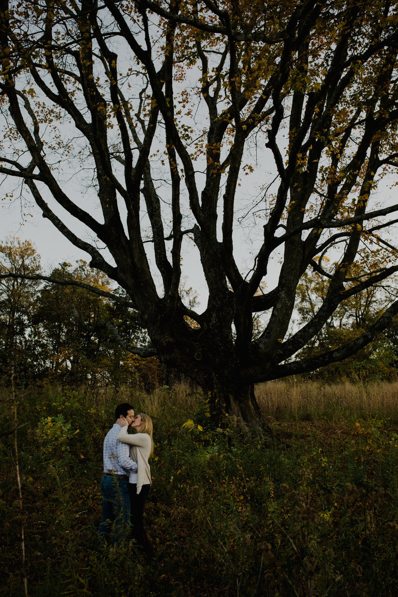 fall engagement photography at longwood gardens kennett square pa