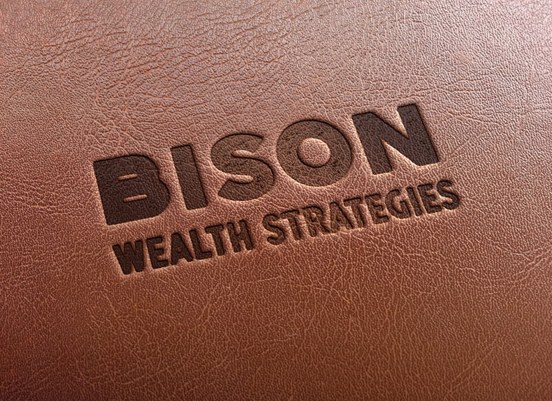 Bison_Leather Portfolio 1 (1)
