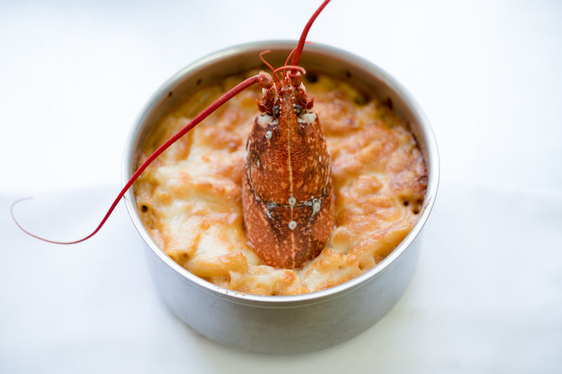 Food photography: close up of the Churchill arm's signature dish; Lobster Mac n cheese.