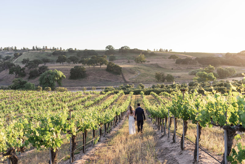 Rio-Seco-Winery-Wedding-Photographer-Kirsten-Bullard-Photography-181