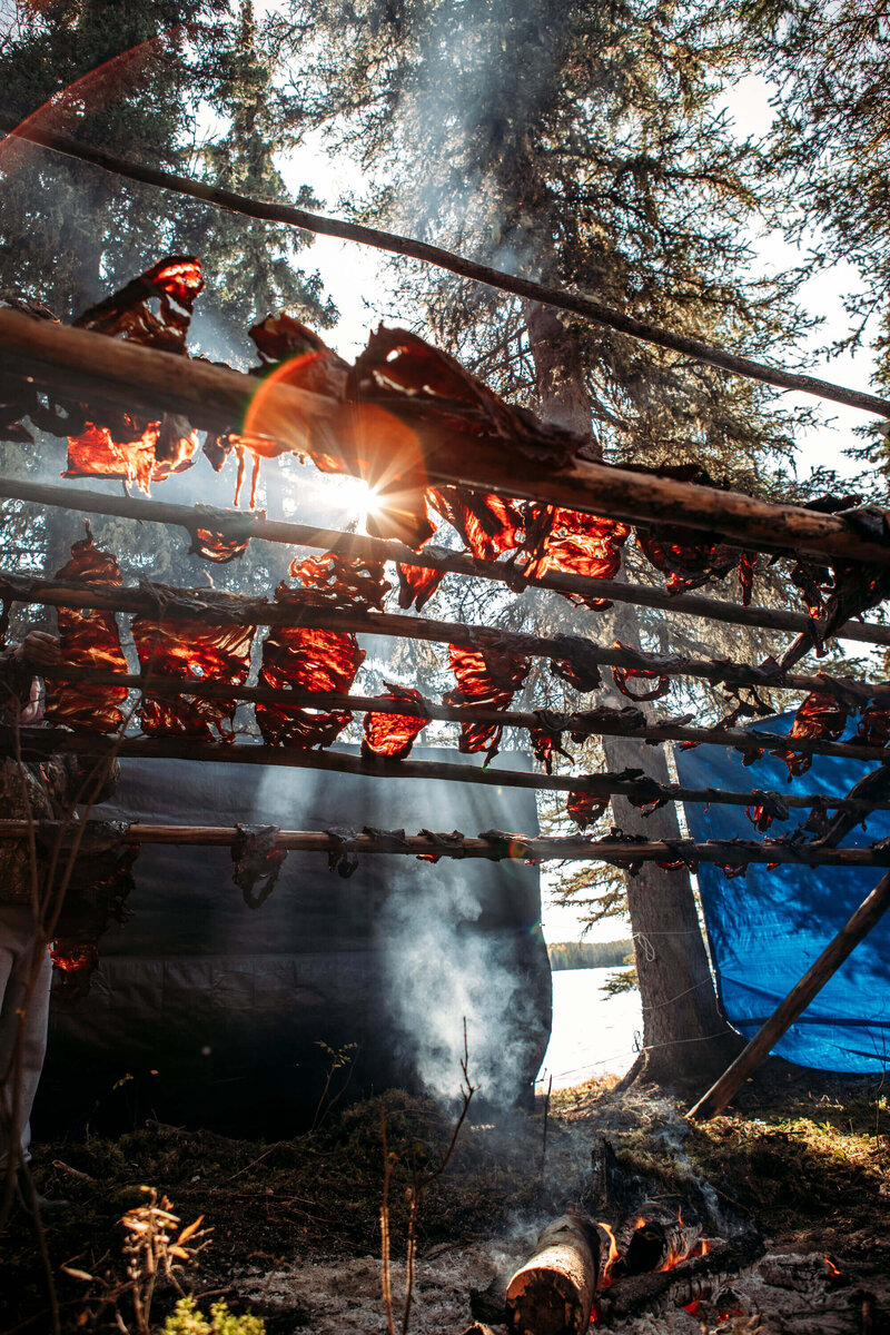 wild meat dries on a rack over a fire