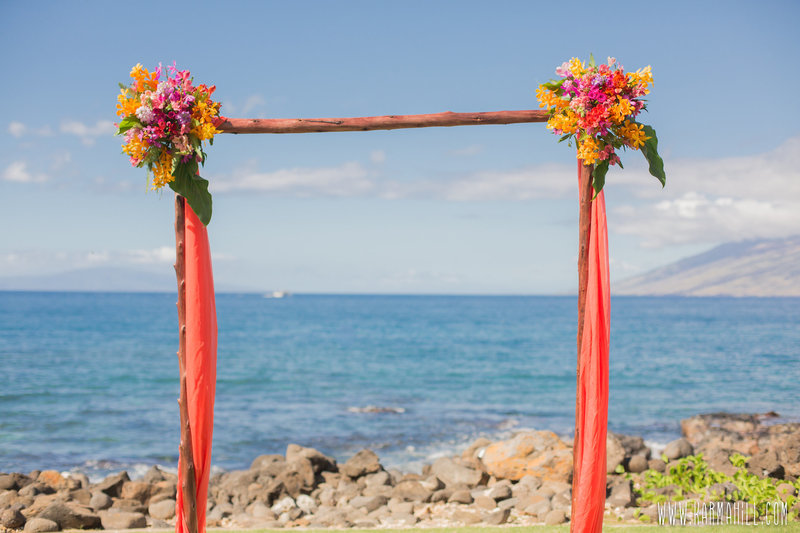 MODERN TROPICAL wedding ARCH