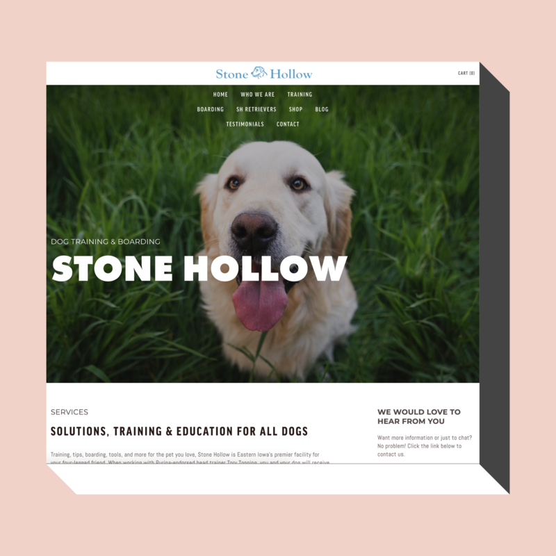 Stone-Hollow-Dog-Solutions-New-Website-Transformation