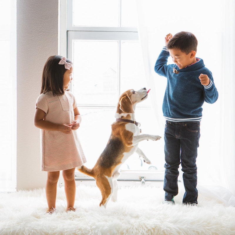 Two children and their dog at professional photography studio with dog in front of light and airy window