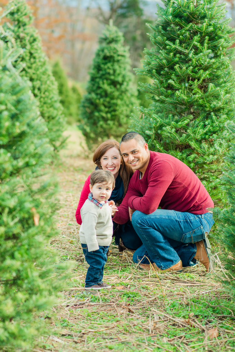 Christmas Tree Farm-63