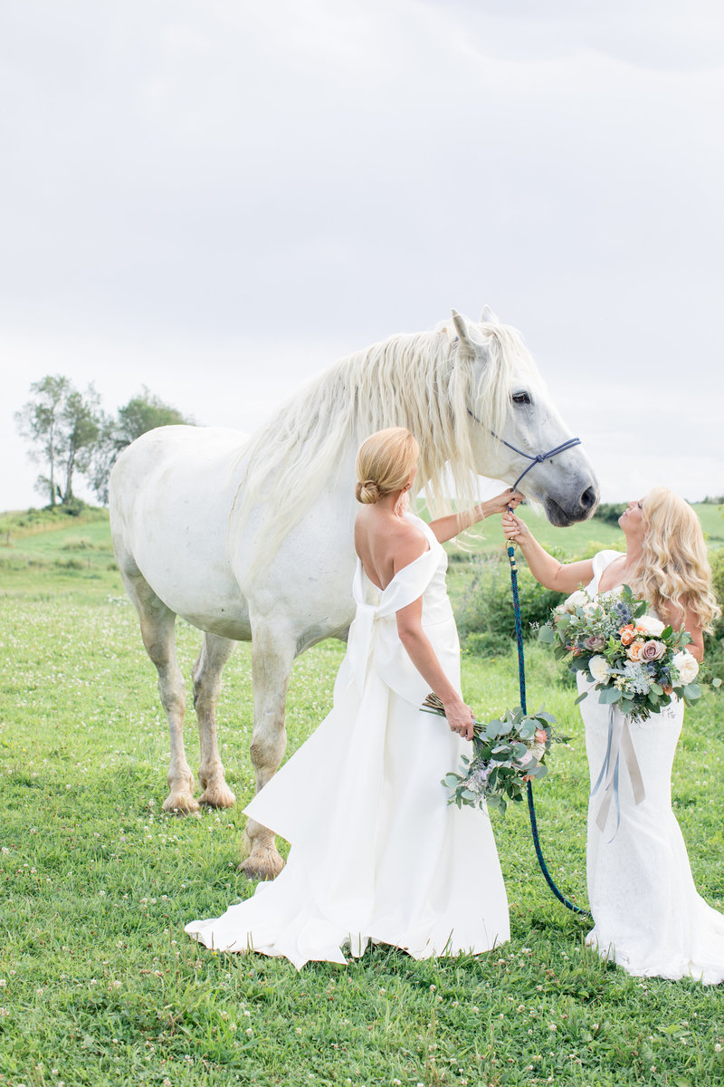 Lakota_Farm_Wedding_portraits-74