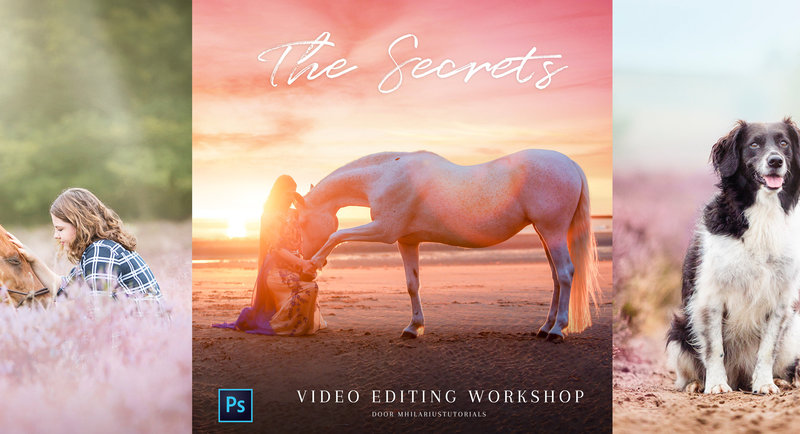 The Secrets Editing Sessions