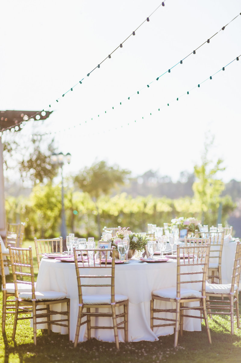 Mount-Palomar-Winery-Temecula-Wedding-Photography-136