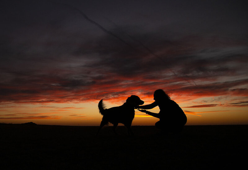 Sunset silhouette of Tammy Karin and Sirius.