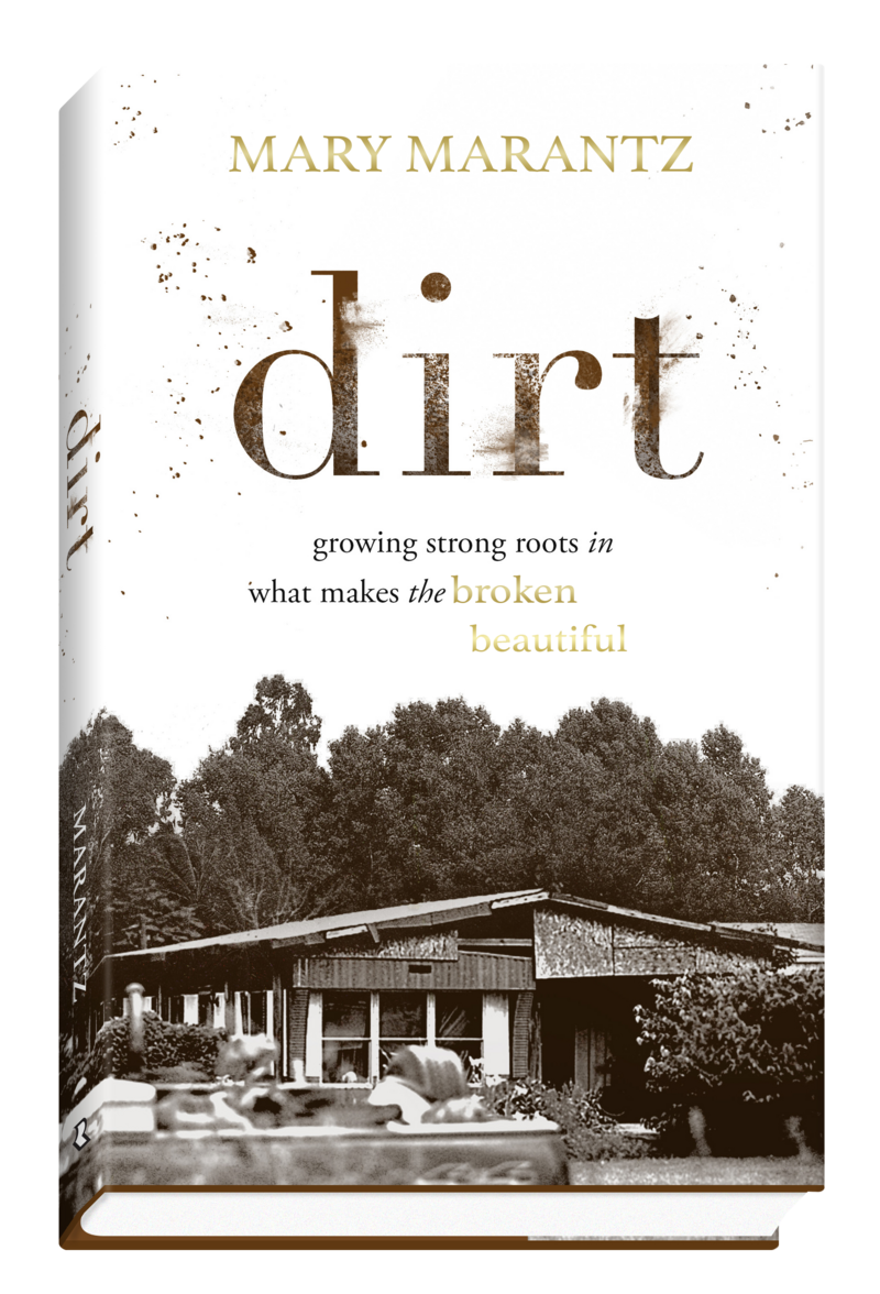 Dirt_book_cover_3D-modified-gold2