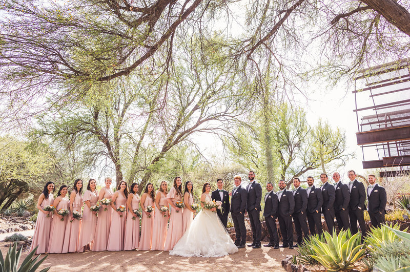 favorites-desert-botanical-garden-wedding-an-aaron-kes-photography-34