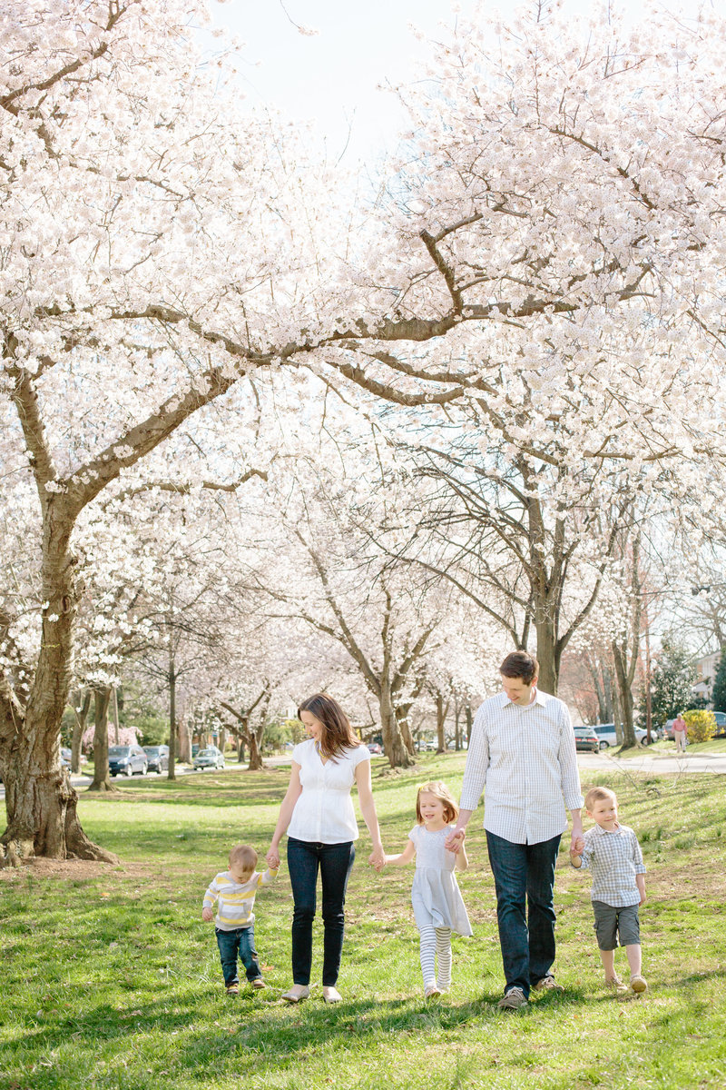 Family Cherry Blossom Pictures