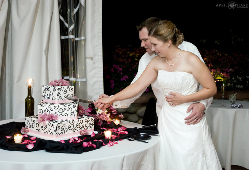 Cake cutting at a Hudson Gardens Tent Reception in Littleton