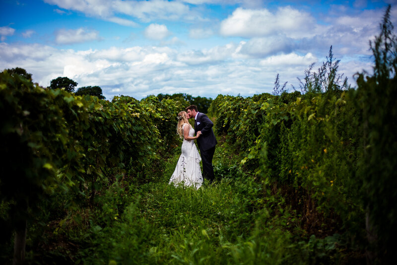 Bride and groom kissing in the middle of the vineyard at Quincy Cellars