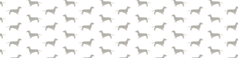 Brand Pattern PNG-04