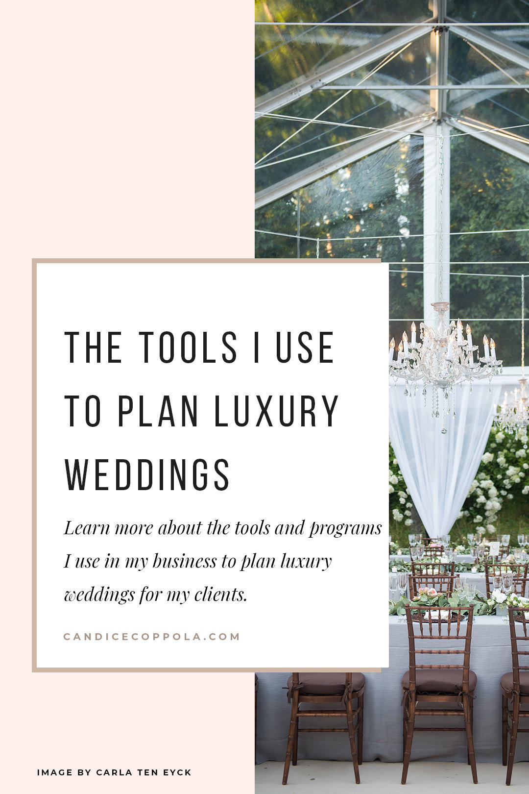 Are you searching for the right tools to run your wedding planning business? Learn more about the tools I used to plan luxury weddings for my clients, and receive special discounts and freebies! #weddingplannerbiz #businesstools